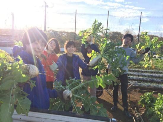 自分たちで育てた野菜を収穫する、ベジタブルサークル